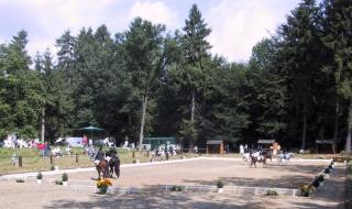 Dressurplatz 2001