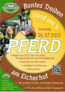 Buntes Treiben rund ums Pferd - Eicherhof 2015